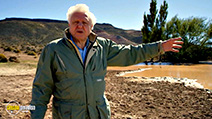 A still #5 from Attenborough at 90 (2016)