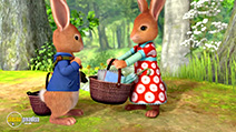 A still #8 from Peter Rabbit: The Tale of True Friends (2014)