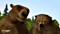 A still #2 from Alpha and Omega: Journey to Bear Kingdom (2017)