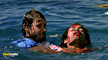 A still #9 from Jaws: The Revenge (1987)