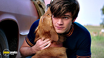 A still #1 from A Dog's Purpose (2017)