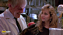 A still #46 from Return of the Killer Tomatoes (1988)