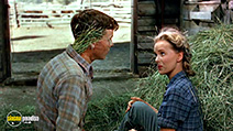 A still #2 from Green Grass of Wyoming (1948)