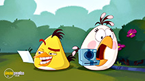 A still #4 from Angry Birds Toons: Series 3: Vol.2 (2015)