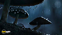 A still #49 from Minuscule: Valley of the Lost Ants (2013)