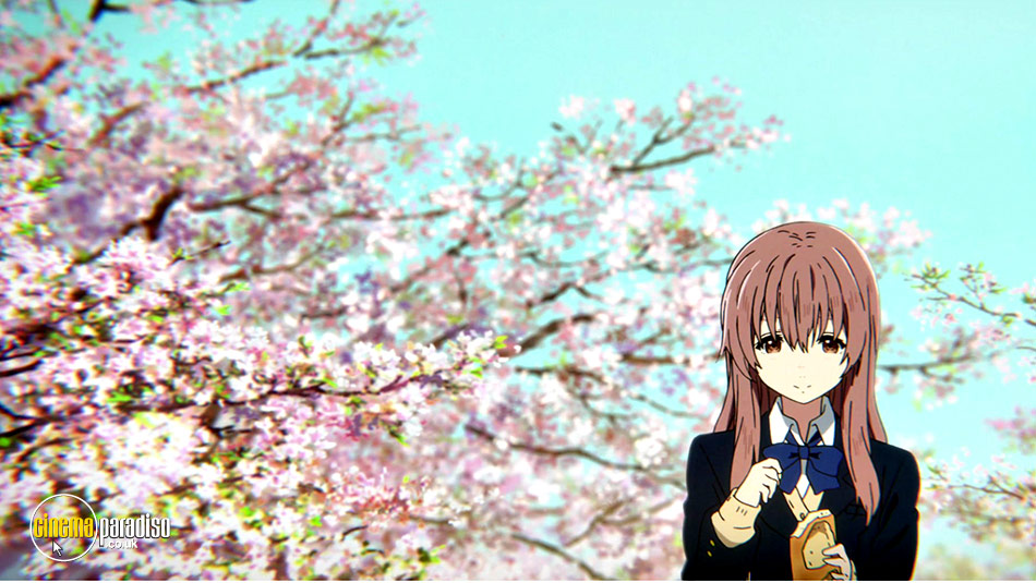 rent a silent voice aka koe no katachi 2016 film