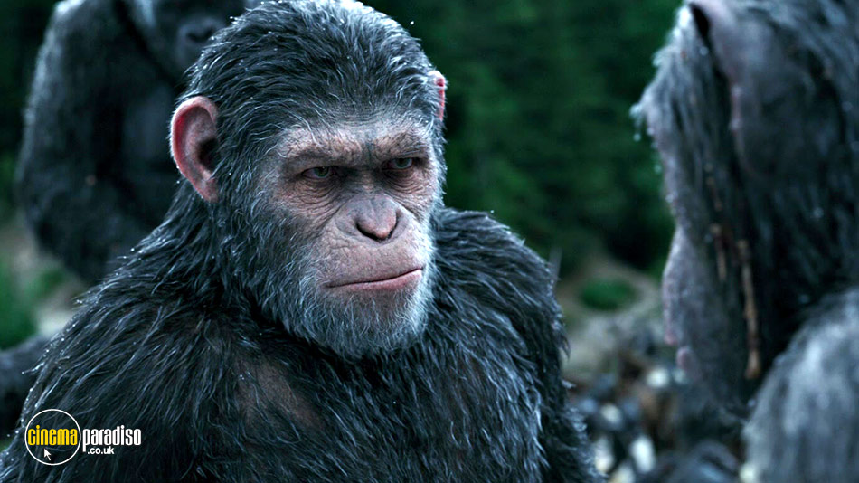 War for the Planet of the Apes (aka Planet of the Apes 3) online DVD rental