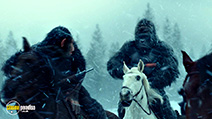 A still #5 from War for the Planet of the Apes (2017)
