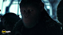 A still #6 from War for the Planet of the Apes (2017)