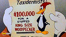 A still #44 from Woody Woodpecker and Friends: Vol.3 (1948)