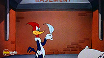 A still #40 from Woody Woodpecker and Friends: Vol.3 (1948)