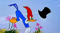 A still #37 from Woody Woodpecker and Friends: Vol.3 (1948)