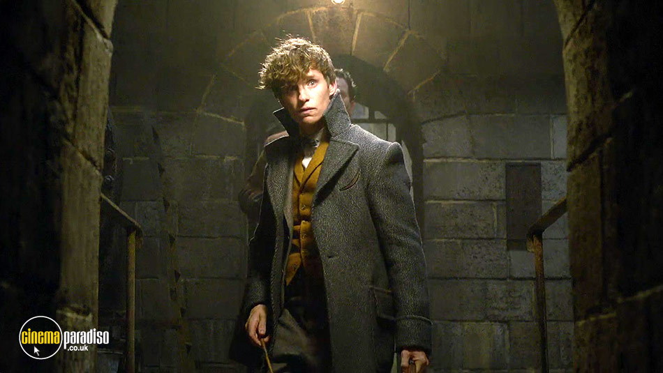 Fantastic Beasts: The Crimes of Grindelwald (aka Fantastic Beasts and Where to Find Them 2) online DVD rental