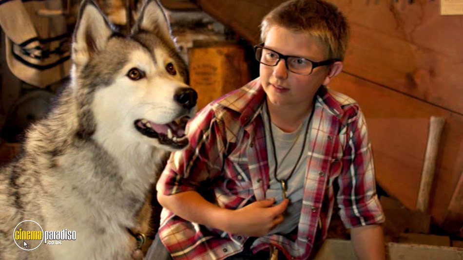 Timber the Treasure Dog online DVD rental