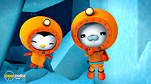 A still #7 from Octonauts: Polar Adventures (2014)