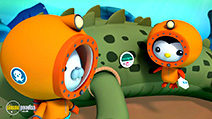 A still #4 from Octonauts: Polar Adventures (2014)
