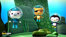 A still #2 from Octonauts: Polar Adventures (2014)