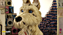 A still #7 from Isle of Dogs (2018)