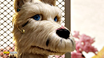 A still #1 from Isle of Dogs (2018)