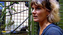A still #4 from Monkey Life: Series 6 (2012)