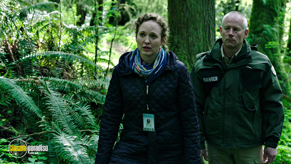 A still #5 from Leave No Trace (2018)