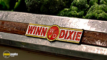 Still #8 from Because of Winn-Dixie
