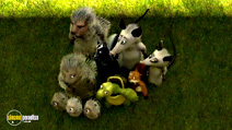 Still #2 from Over the Hedge