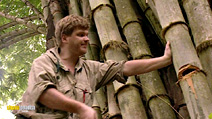 Still #5 from Ray Mears Extreme Survival: Series 1 and 2