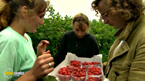Still #5 from Escape to River Cottage