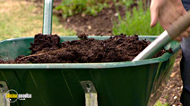 Still #3 from How to Garden Organically