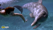 A still #6 from Flipper (1996)