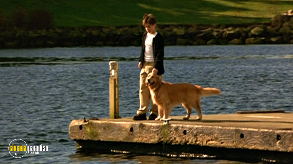 Air Bud: Golden Receiver online DVD rental