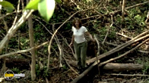 Still #2 from In the Wild: Orangutans with Julia Roberts