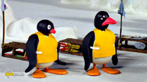 Still #5 from Pingu: Sledge Academy