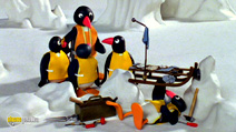 Still #7 from Pingu: Sledge Academy