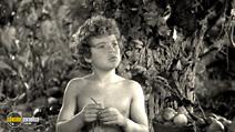 Still #6 from Tarzan's Secret Treasure/Tarzan's New York Adventure