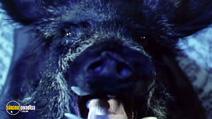 Still #2 from Wolfman