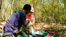 Still #6 from Island of Lemurs: Madagascar