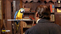 Still #5 from Doctor Dolittle