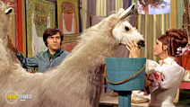Still #6 from Doctor Dolittle