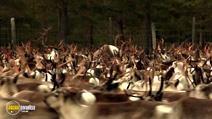 Still #3 from Aatsinki: The Story of Arctic Cowboys