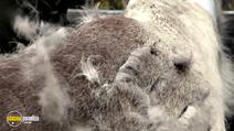 Still #5 from Aatsinki: The Story of Arctic Cowboys