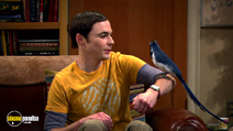 Still #3 from The Big Bang Theory: Series 5