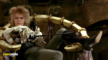A still #14 from Labyrinth with David Bowie
