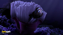 Still #1 from Finding Nemo