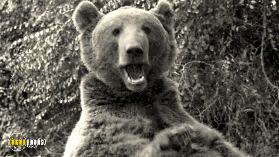 Wojtek: The Bear That Went to War online DVD rental