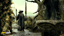 A still #4 from The Hobbit: The Desolation of Smaug with Ian McKellen