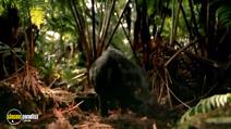Still #4 from Hidden Hawaii
