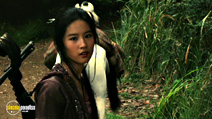 A still #20 from The Forbidden Kingdom with Yifei Liu