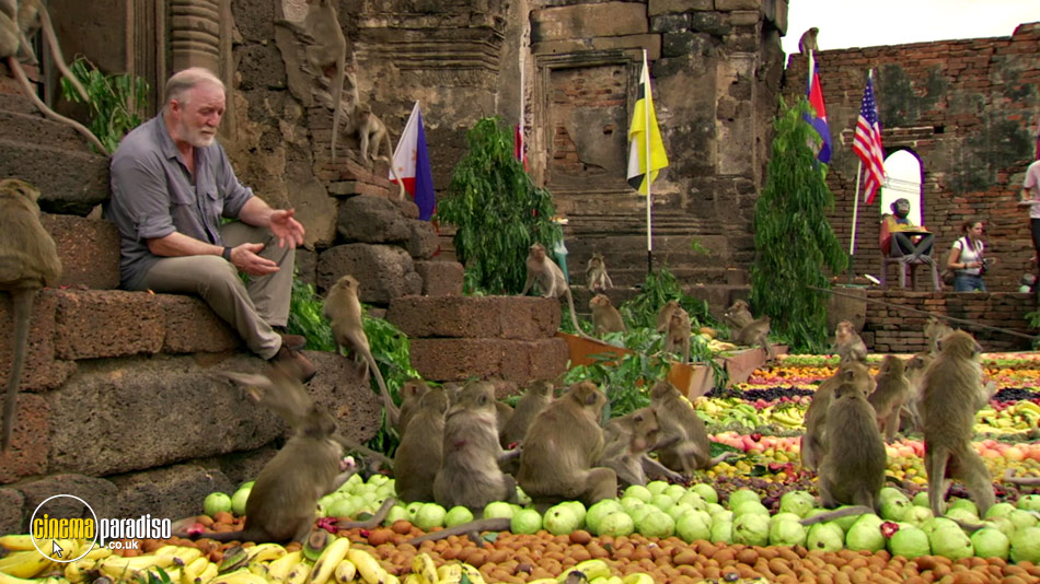 Monkey Planet online DVD rental